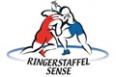 sponsoring_rssense.jpg